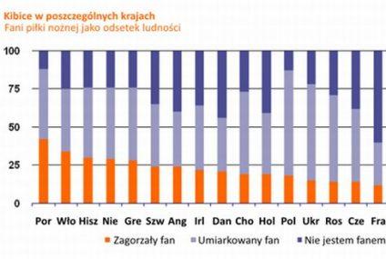 19 euro wydadzą Polacy na akcesoria związane z Mistrzostwami Europy