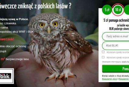 BLIK wprowadza płatność z banera reklamowego