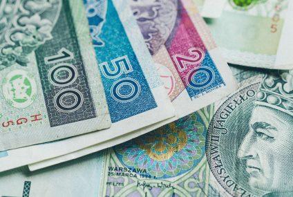 Syndyk SKOK nie może żądać od członków kasy pokrycia straty w wysokości podwójnej kwoty wpłaconych udziałów