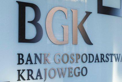 BGK i EFI z miliardami dla małych i średnich przedsiębiorstw