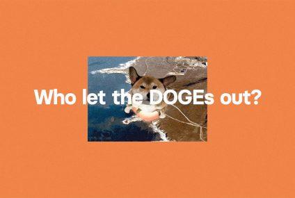 Revolut udostępnia kryptowalutę Dogecoin
